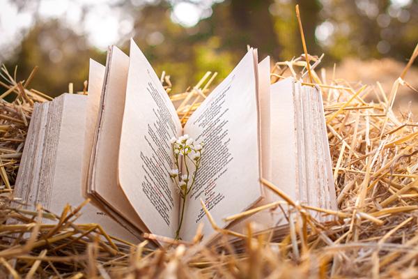 Lesungen auf der Kulturfarm