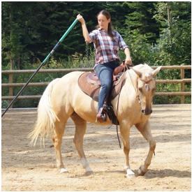 Natural Horsemanship mit Annette Taubmann mit Annette Taubmann